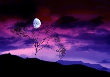 purple_sky_picture_165956