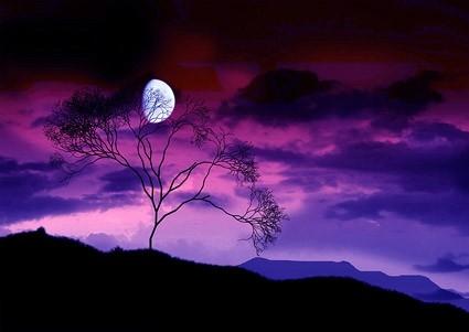 purple_sky_picture_165956